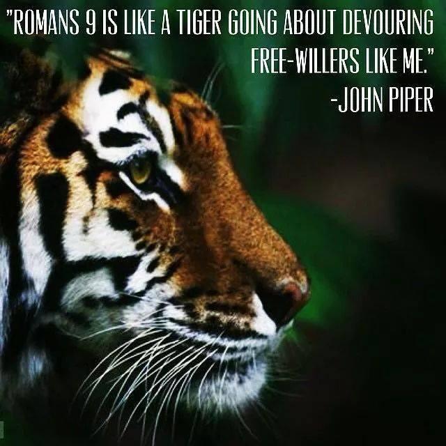 Romans 9 The Tiger
