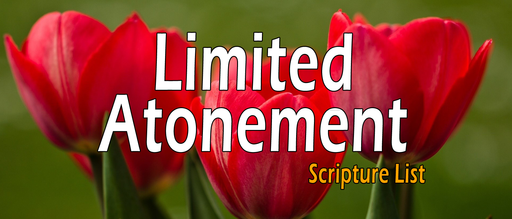Limited Atonement, Definite Redemption - Scripture List & Case