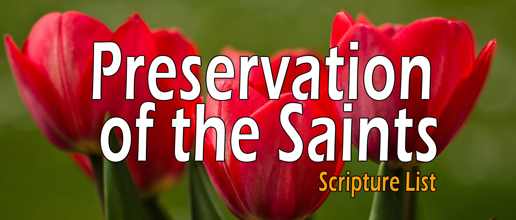 Preservation of the Saints - Scripture List