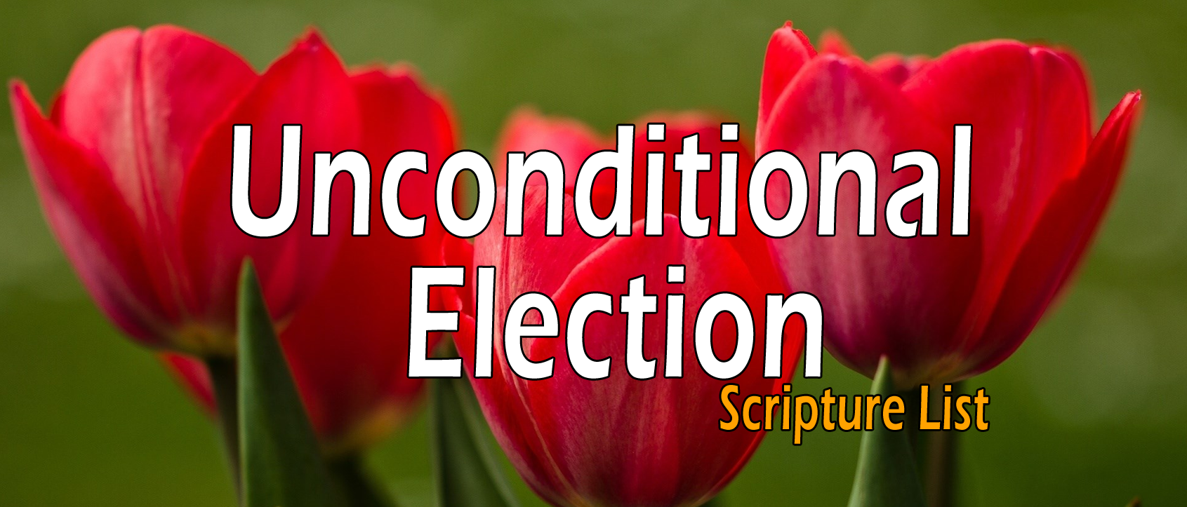Unconditional Election, Sovereign Grace - Scripture List